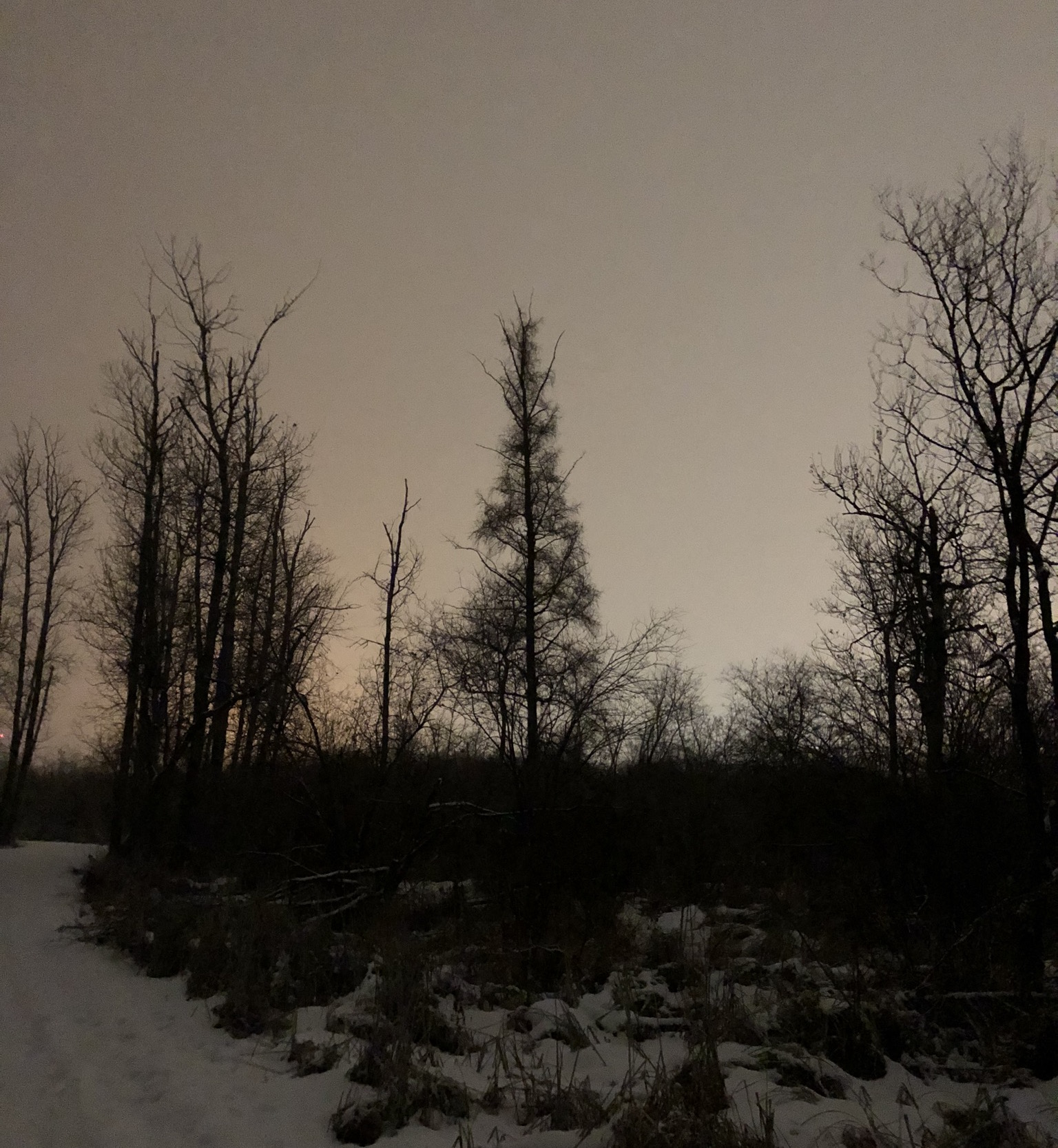 Tamarack during Longest Night Run